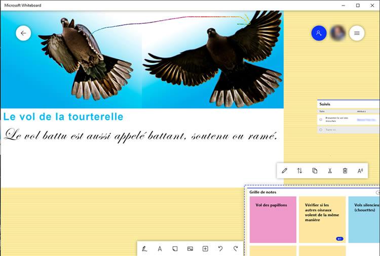 utilisation suite Microsoft 365 pour enseignement presentiel whiteboard microsoft 365